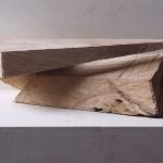 lime 03/01_2, 20 x 40 x 25 cm, 2003