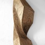elm 06/10, 100 x 35 x 18 cm, 2010