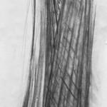 Kohle auf Papier, 169 x 36 cm, 2008